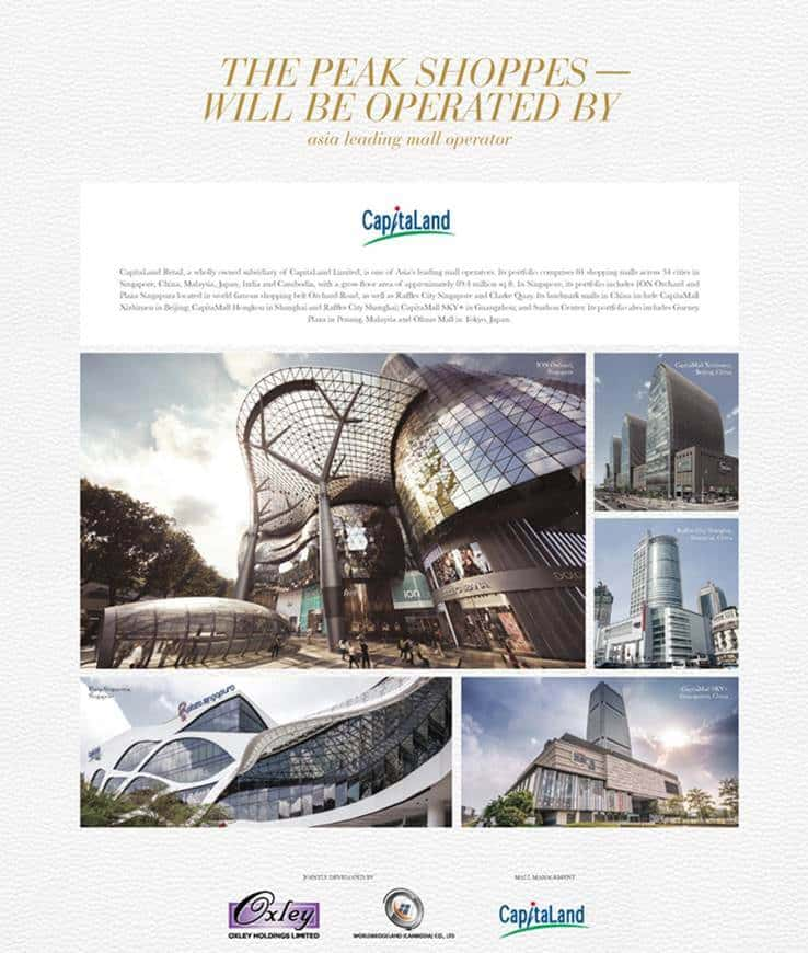 The Peak Shoppes - Capitaland retail record