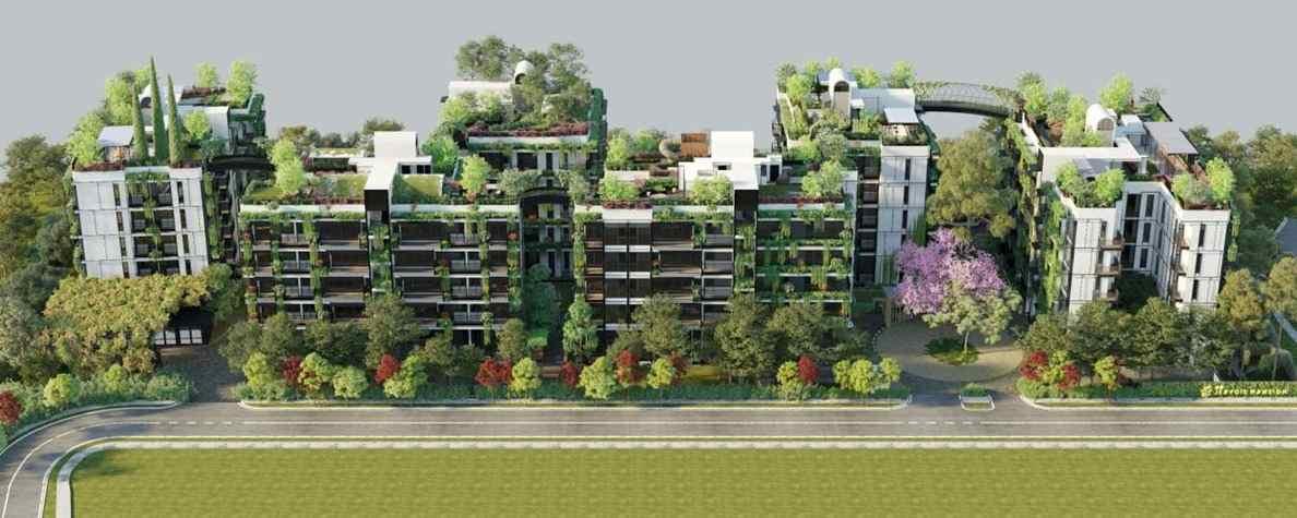Jervois Mansion - Aerial Perspective