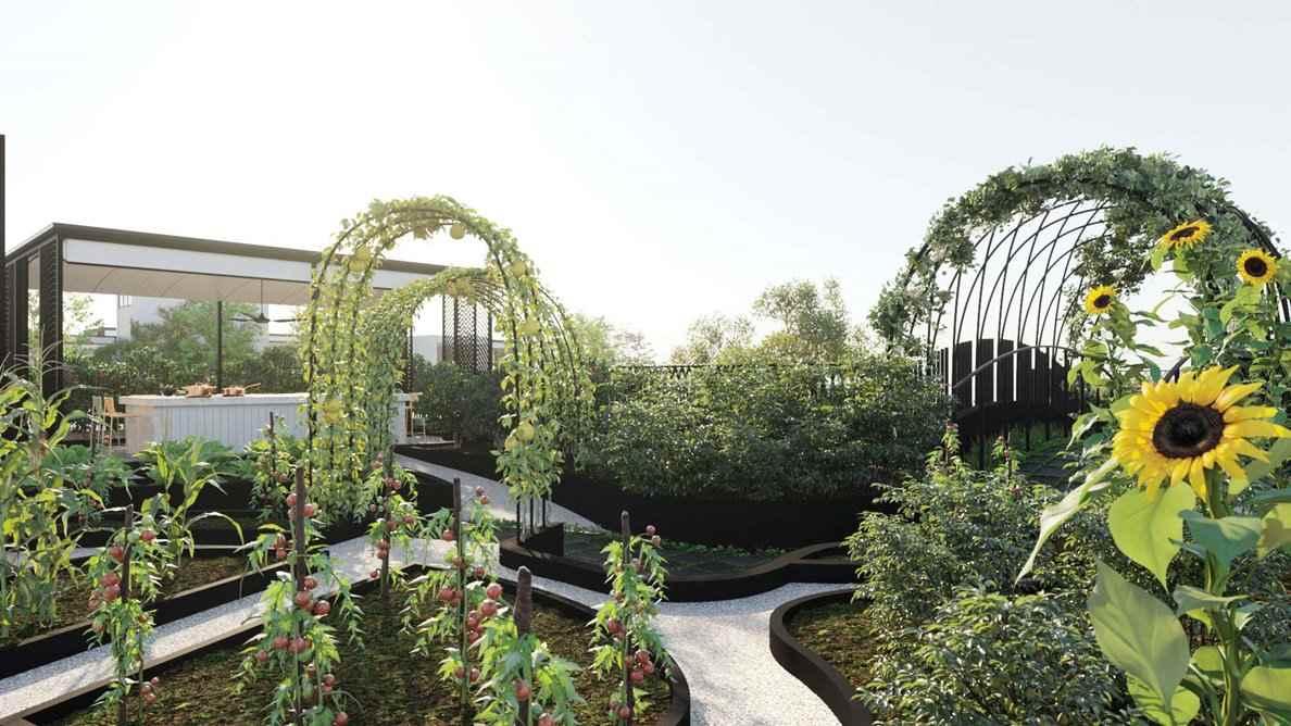 Jervois Mansion - Community_Urban_Farm_Garden
